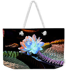Evening Splendor Weekender Tote Bag by Cindy Manero