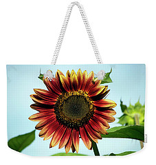 Weekender Tote Bag featuring the photograph Evening Sun Sunflower 2016 #1 by Jeff Severson