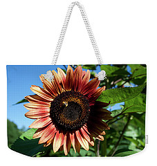 Weekender Tote Bag featuring the photograph Evening Sun Sunflower 2016 #2 by Jeff Severson