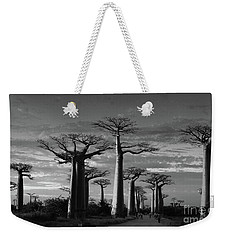 evening under the baobabs of Madagascar bw Weekender Tote Bag