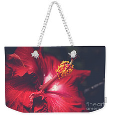 Weekender Tote Bag featuring the photograph Evening Whispers by Sharon Mau