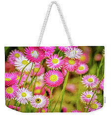 Weekender Tote Bag featuring the photograph Everlasting Daisies, Kings Park by Dave Catley