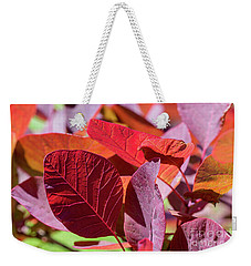 Weekender Tote Bag featuring the photograph Everything Is Extraordinary by Linda Lees