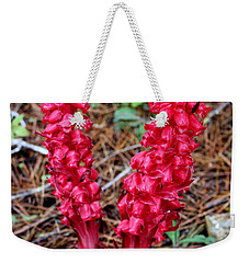 Weekender Tote Bag featuring the photograph Exotic Flower Or  by Marie Neder