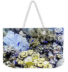 Weekender Tote Bag featuring the photograph Explosion Of Life I by Perla Copernik