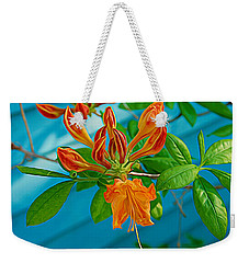 Weekender Tote Bag featuring the photograph Expressionalism Budding Azalea by Aimee L Maher Photography and Art Visit ALMGallerydotcom