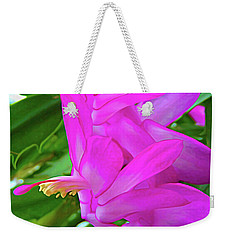 Weekender Tote Bag featuring the photograph Expressionalism Christmas Cactus Flower by Aimee L Maher Photography and Art Visit ALMGallerydotcom