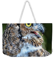 Expressive Weekender Tote Bag by Amy Porter