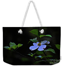 Weekender Tote Bag featuring the photograph Exquisite Light by Skip Willits