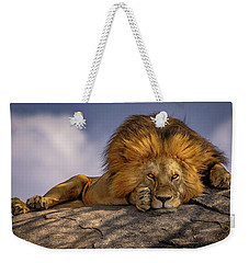 Eye Contact On The Serengeti Weekender Tote Bag