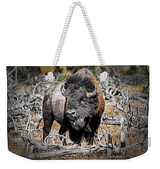 Eye Of The Buffalo Weekender Tote Bag by Donna Kennedy
