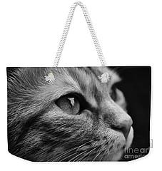 Eye Of The Cat Weekender Tote Bag
