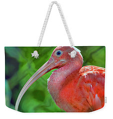 Eye Of The Ibis Weekender Tote Bag by Nadia Sanowar