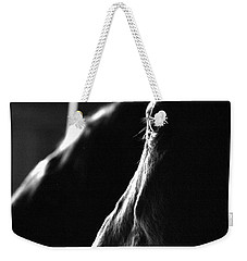 Weekender Tote Bag featuring the photograph Eye Squared by Angela Rath