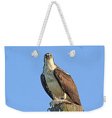 Eyeball To Eyeball Weekender Tote Bag