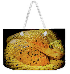 Weekender Tote Bag featuring the photograph Eyelash Viper by Karen Wiles
