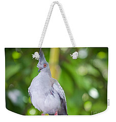 Weekender Tote Bag featuring the photograph Eyes Wide Open by Judy Kay