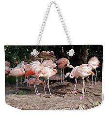Fabulous Flamingos Weekender Tote Bag