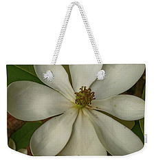 Weekender Tote Bag featuring the photograph Fading Glory by Robert Knight