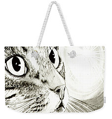 Fairy Light Tabby Cat Drawing Weekender Tote Bag