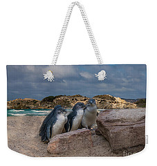 Weekender Tote Bag featuring the photograph Fairy Penguins by Elaine Teague
