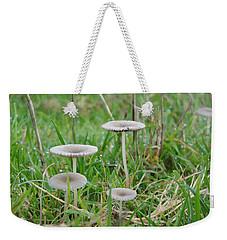 Fairy Steps Weekender Tote Bag