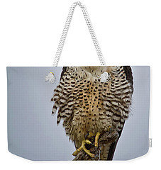 Falcon With Cocked Head Weekender Tote Bag