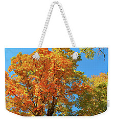 Fall 2016 13 Weekender Tote Bag
