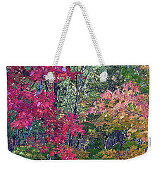 Fall 2016 2 Weekender Tote Bag