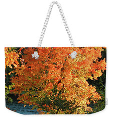 Fall 2016 4 Weekender Tote Bag