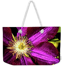 Weekender Tote Bag featuring the photograph Fall Afternoon by Jessica Manelis