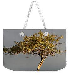 Fall At The Crabapple Tree Weekender Tote Bag