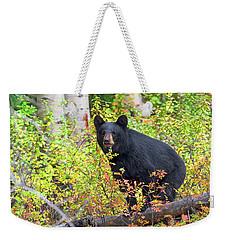 Fall Bear Weekender Tote Bag by Scott Warner