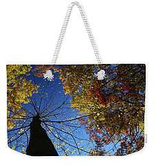 Weekender Tote Bag featuring the photograph Fall Canopy Patterns 2 by Mary Bedy