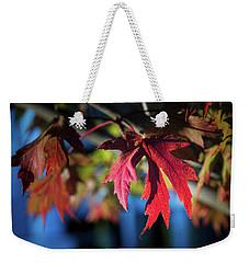 Fall Color 5528 19 Weekender Tote Bag