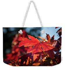 Fall Color 5528 23 Weekender Tote Bag