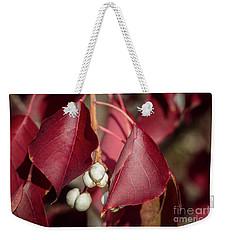 Fall Color 5528 27 Weekender Tote Bag by M K  Miller