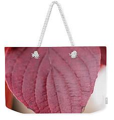 Fall Color 5528 52 Weekender Tote Bag by M K  Miller