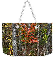 Fall Color At Gladwin 4543 Weekender Tote Bag