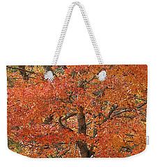Fall Color Weekender Tote Bag