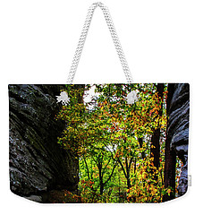 Weekender Tote Bag featuring the photograph Fall Color Lights Up The Trail by Barbara Bowen