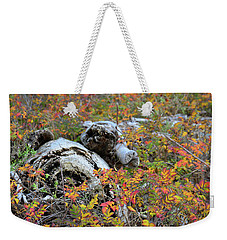 Weekender Tote Bag featuring the photograph Fall Color On The Beach by Ronda Broatch