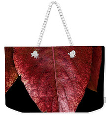 Weekender Tote Bag featuring the photograph Fall Colors 3 by James Sage