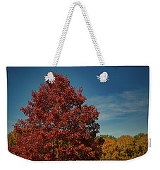 Weekender Tote Bag featuring the photograph Fall Colors, Ashville, Nc by Richard Goldman