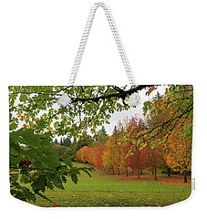 Fall Colors Of Maple Trees Weekender Tote Bag by Jit Lim