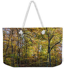 Weekender Tote Bag featuring the photograph Fall Colors Of Rock Creek Park by Ed Clark