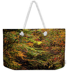 Weekender Tote Bag featuring the photograph Fall Colors On The Trail by Shelby Young