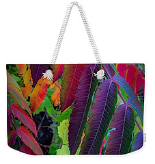 Weekender Tote Bag featuring the photograph Fall Feathers by Kendall McKernon