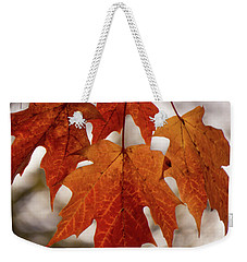 Fall Foliage Weekender Tote Bag by Kimberly Mackowski