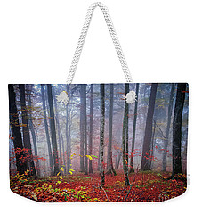Weekender Tote Bag featuring the photograph Fall Forest In Fog by Elena Elisseeva